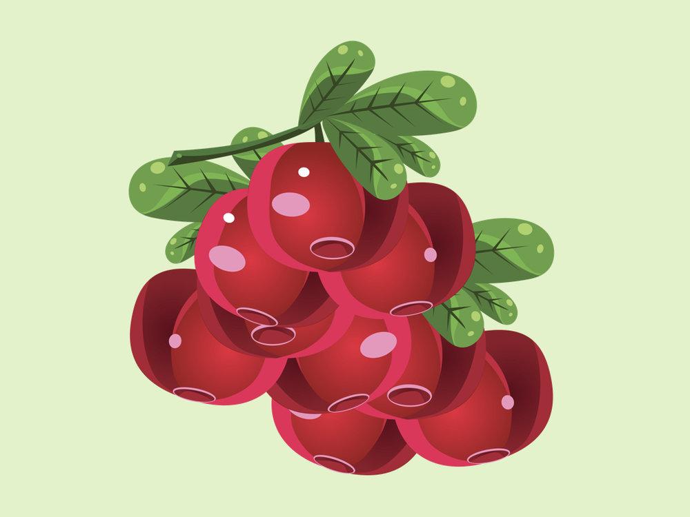 Cranberryfix.001.jpeg