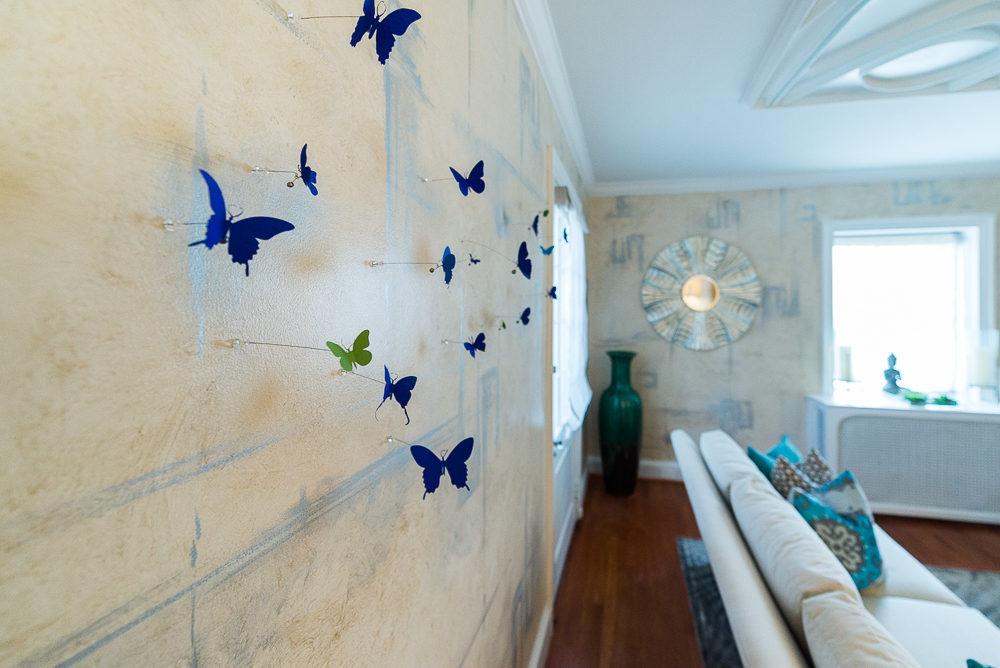 dcdh-butterflies-01.jpg