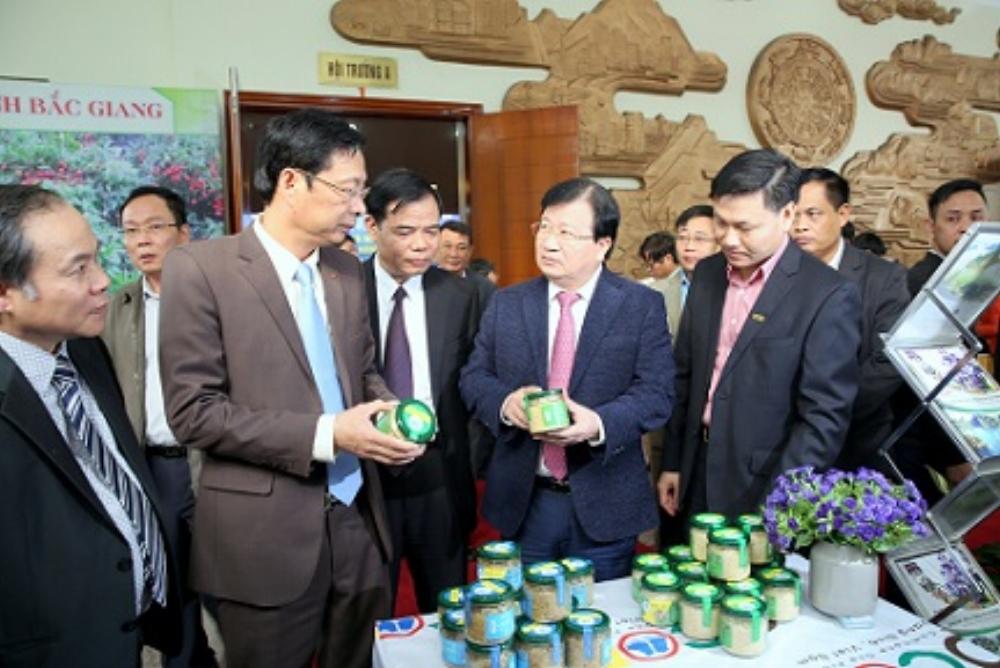 Phó Thủ tướng Trịnh Đình Dũng cùng lãnh đạo Bộ NN&PTNT, tỉnh Quảng Ninh đánh giá cao nhiều sản phẩm đặc trưng, đặc sản của các địa phương trong tỉnh Quảng Ninh và một số địa phương lân cận.