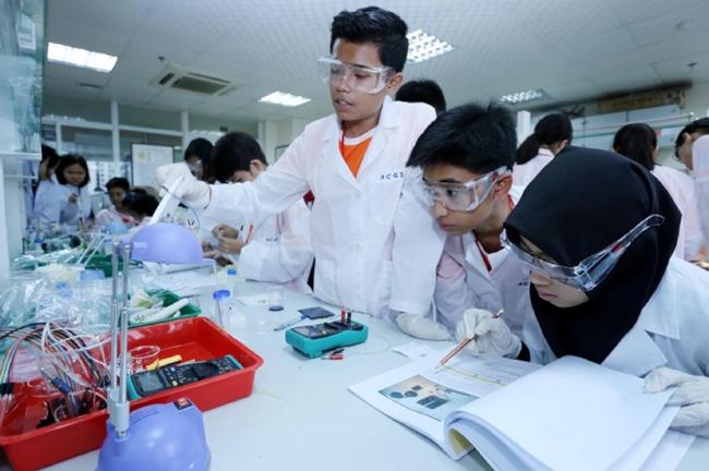 Thí sinh Malaysia đang nghiên cứu tài liệu để làm thí nghiệm.