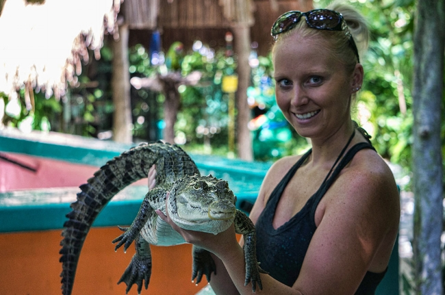 Chứng minh người ta sau khi ôm một con cá sấu dài 1m sẽ có xu hướng đánh bạc liều lĩnh hơn - Matthew Rockloff vàNancy Greer