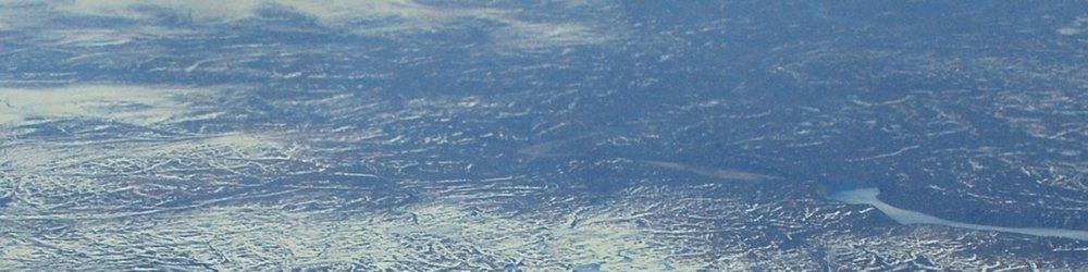 Vẫn bất chấp nhân giống và mở rộng sản xuất ra tận... Bắc Cực -