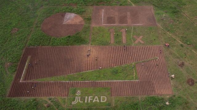 Người dân Zambia đã bỏ ra 5 ngày để vẽ lên trên cánh đồng một bức hình biểu đồ mang thông điệp: Châu Phi cần được thế giới quan tâm hơn về lương thực.