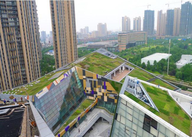 china-thanh-pho-bot-bien-con-son-tto-3-1510544900217.jpg