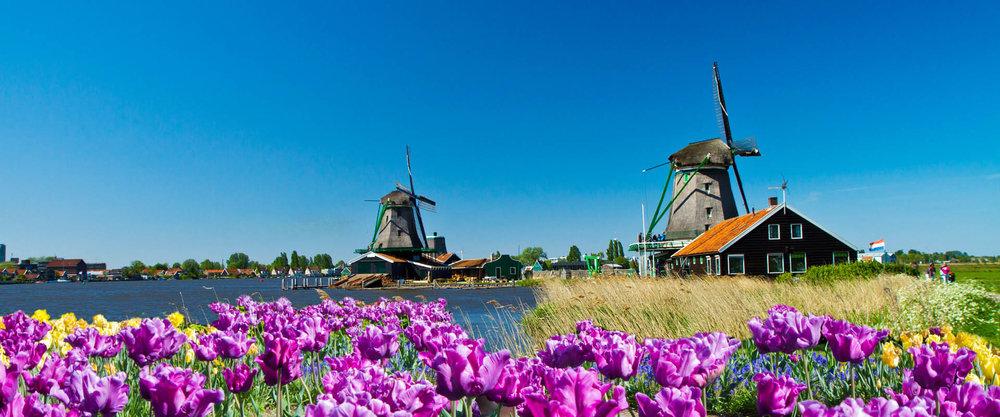 Vườn hoa Keukenhof, Hà Lan -