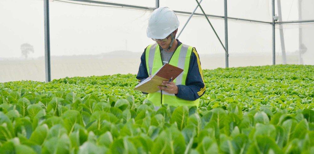 Điểm sơ thực trạng đầu tư nông nghiệp chất lượng cao ở Việt nam -