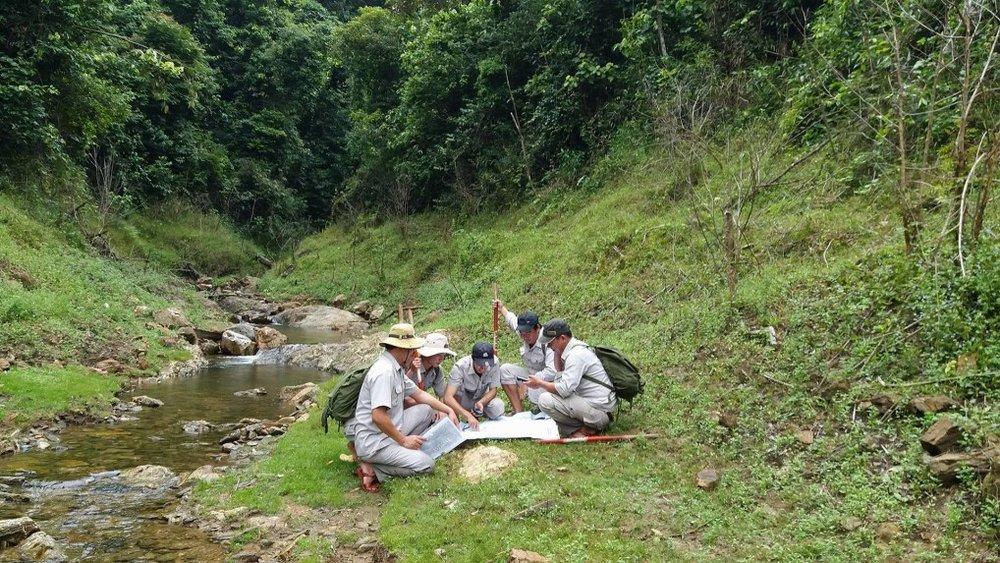 Phần mềm sẽ giúp Việt Nam quản lý rừng bền vững hơn. Ảnh Internet