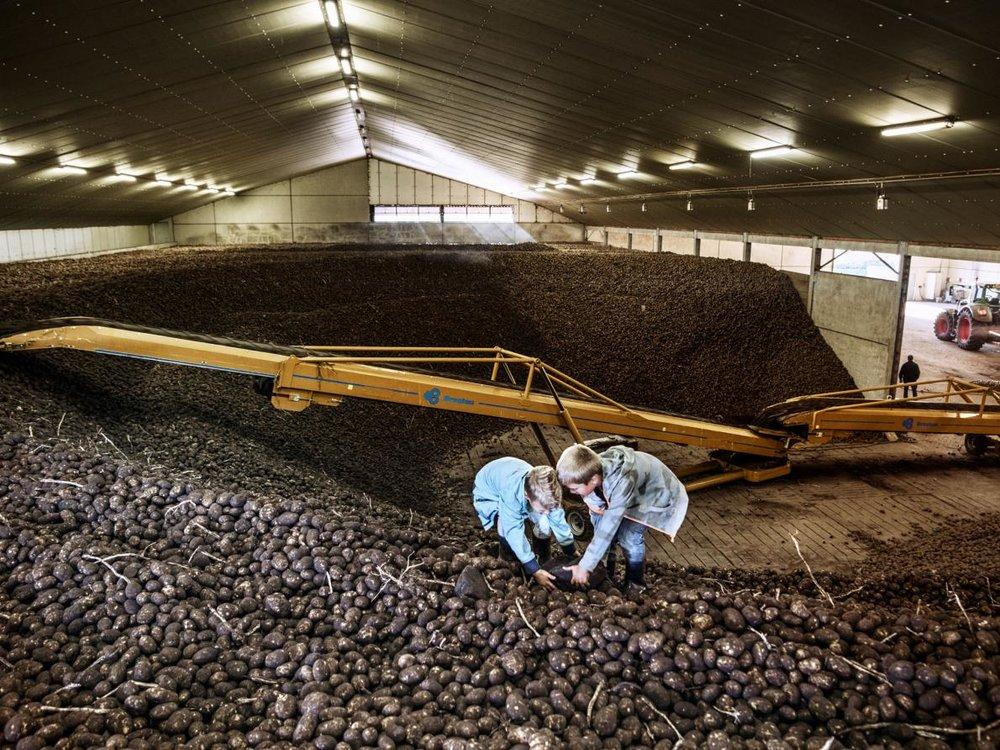 - Dưới 5 phần trăm của lượng nông trại trên toàn thế giới được tiếp cận với phòng phân tích mẫu đất. Đó là con số mà người Hà Lan nhìn thấy thách thức và cơ hội.