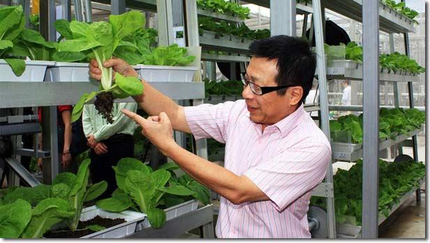 A Go-Grow – Singapore -