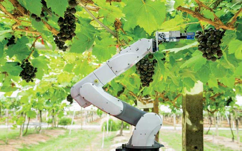 robot-sang-nong-nghiep-doanhnh-5361-1435-1516788779.jpg