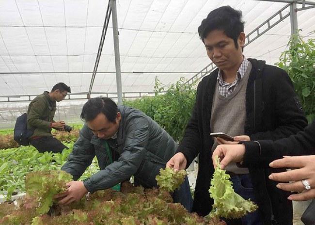 Vườn rau sạch trồng theo phương pháp thủy canh công nghệ cao của gia đình chị Lê Thị Tám