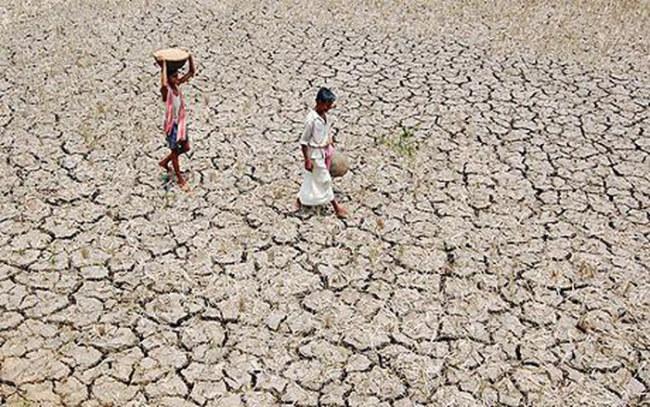 Hạn hán rất thường xảy ra ở nhiều bang của Ấn Độ - Ảnh: AFP