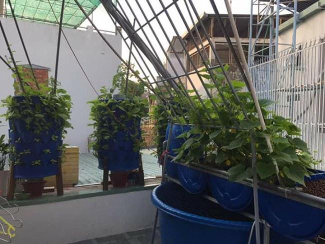 Các mô hình tưới tiết kiệm cũng được áp dụng ở các hộ gia đình để tự sản xuất rau sạch tại nhà - Ảnh: VGP/Đỗ Hương
