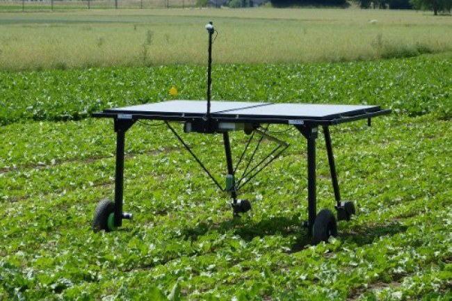 Thiết bị diệt cỏ thông minh sử dụng công nghệ để diệt cỏ mà không gây hại cho cây trồng. Ảnh: Eco Robotix.