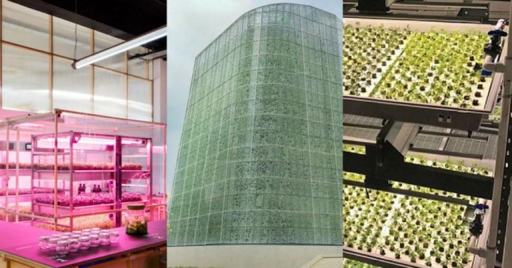 vertical-farming-innovations-2_resize_md.jpg