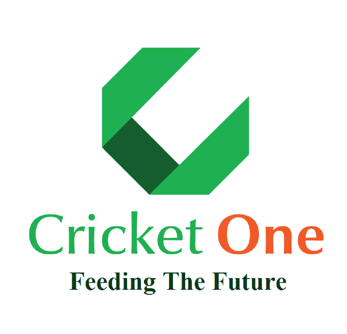 Cricket-One.png