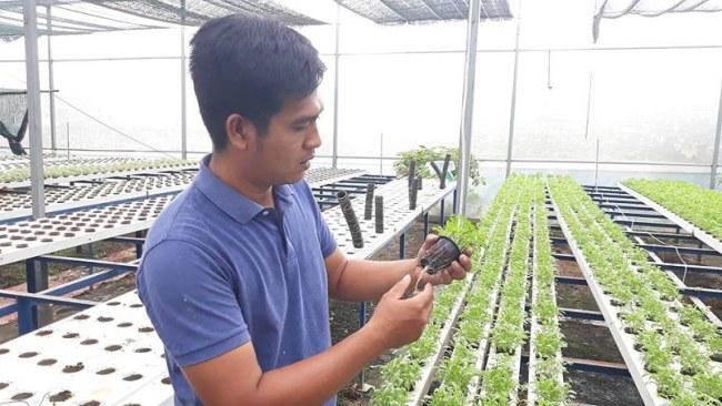Anh Nguyễn Ngọc Thông bên những rọcây mới được chuyển từ khu vực ươm ra nhà màn