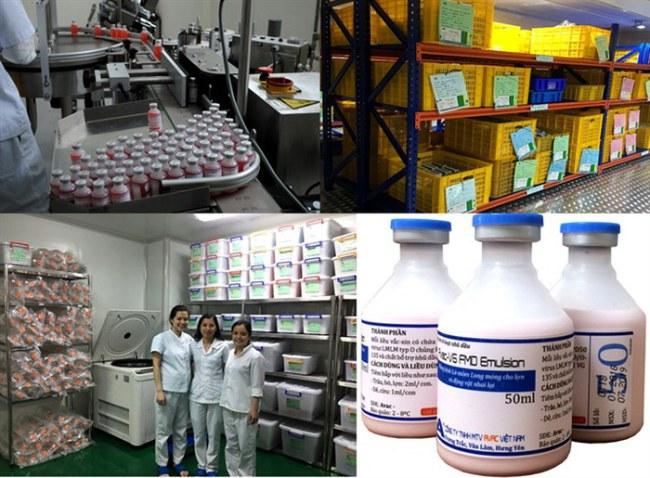 Dây chuyền, nơi đóng gói và bảo quản vacxin phòng bệnh LMLM AVAC-V6 FMD Emulsion type O của Cty RTD