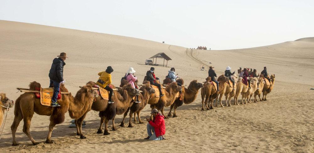 Cưỡi lạc đà ở Minh Sa Sơn, Đôn Hoàng.jpg