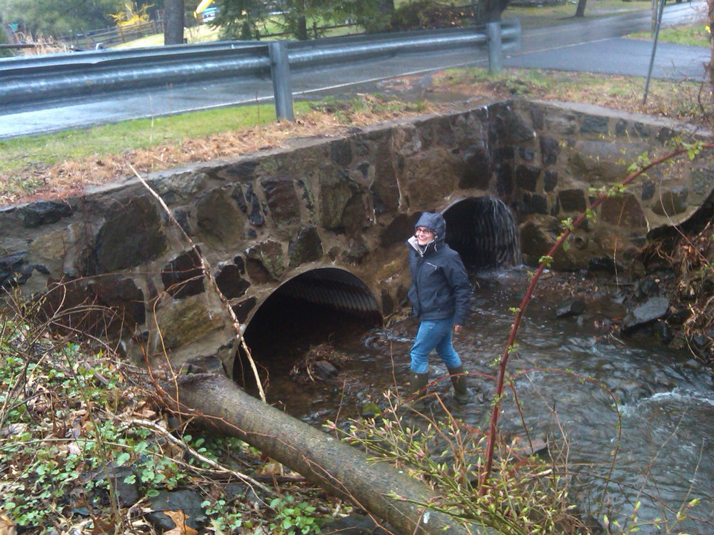 jD in the creek