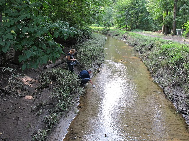 Creek sampling