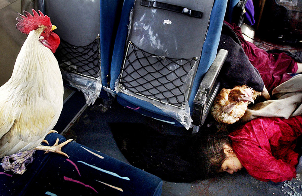 Corpses of children lay in a pool of blood inside a minibus at an intersection near Hatif Haiyawi, an area loyal to Saddam Hussein, during the U.S. Marine 2nd Tank Battalion's advance on Baghdad, Iraq, on April 5, 2003. Controlling civilian movement left numerous civilian deaths as Marines responded to suicide bombers, Iraqi soldiers posing as civilians and other ambush tactics.