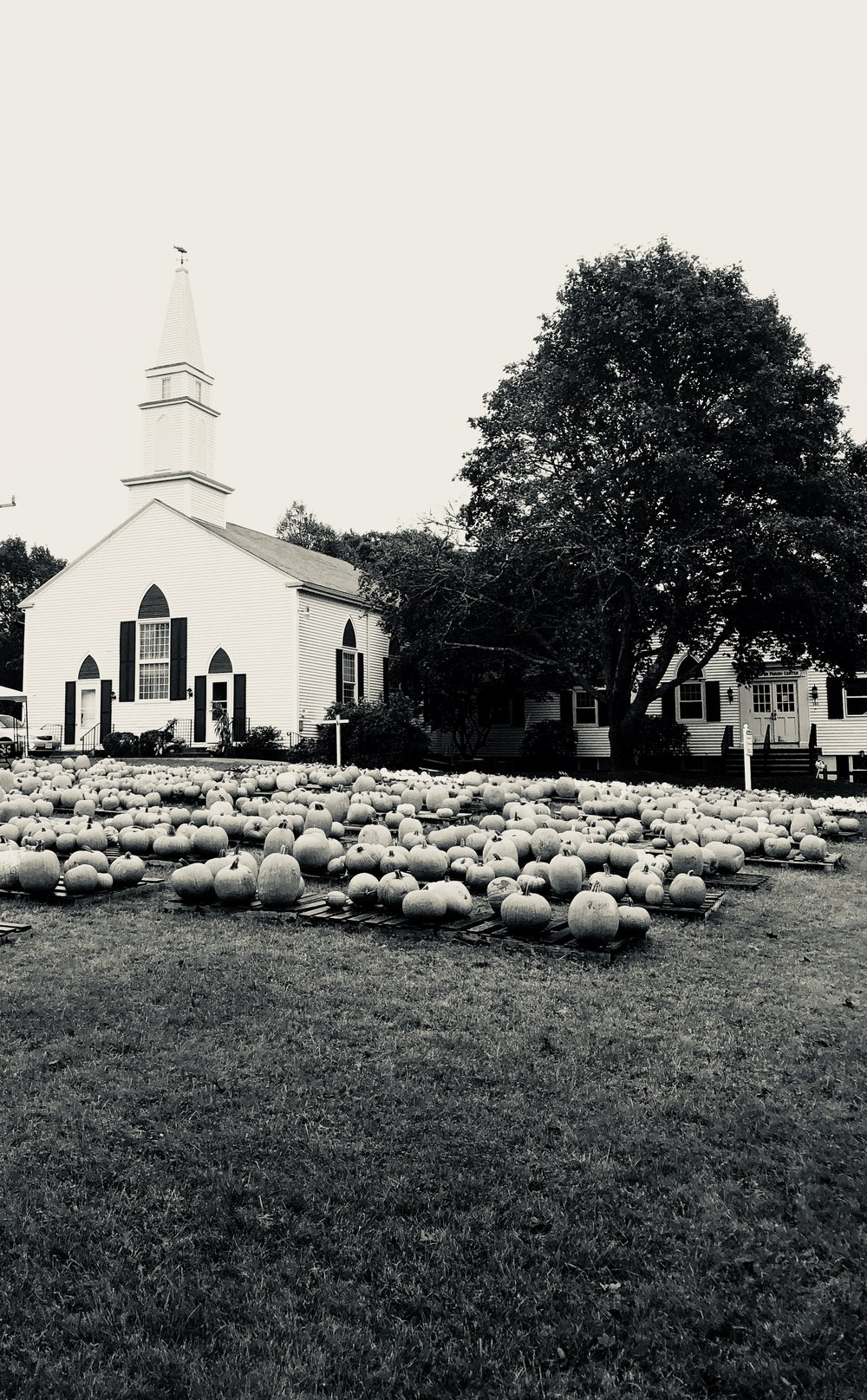 SOUTH YARMOUTH, MA OCTOBER 2017