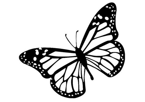 It's possible to go from being the caterpillar to the butterfly. Click the link to be inspired.