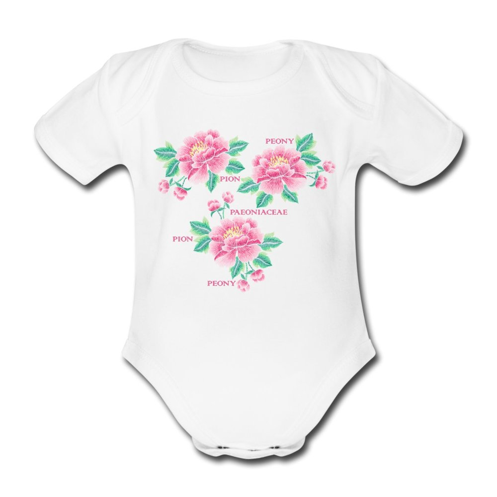 pion-ekologisk-kortaermad-babybody-vit.jpg