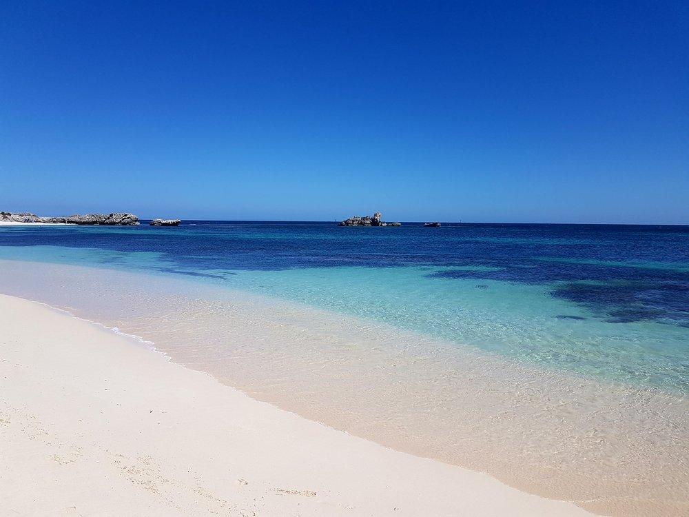 Rottnest-island-2017 1.jpg