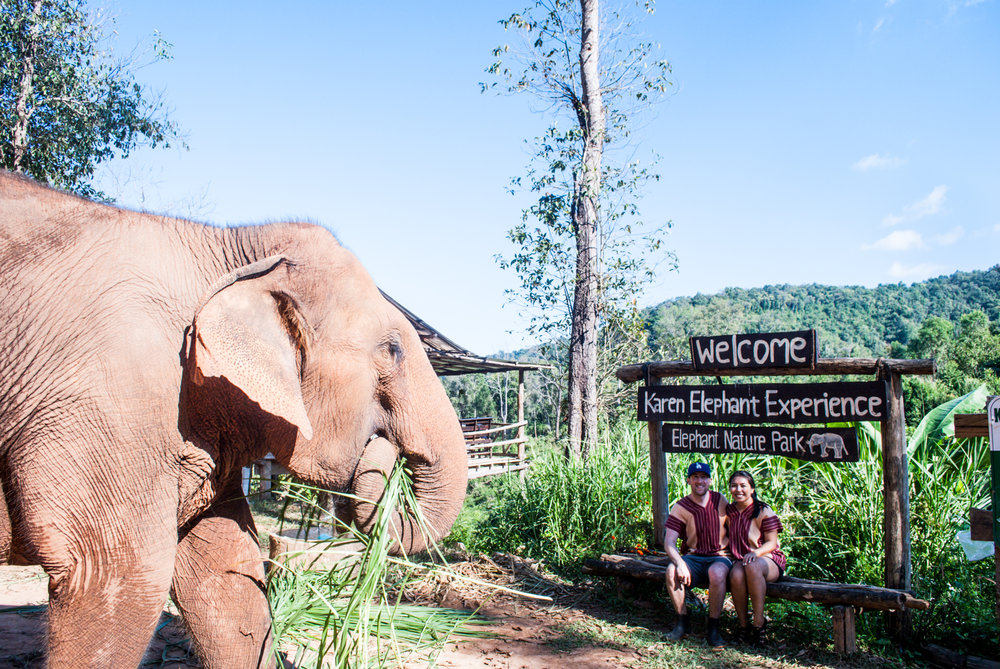 Traveling to Thailand and can't wait to play with elephants? Double-check your choice in elephant sanctuaries as not all are actually ethical. Elephant Nature Park is my top choice for interacting with elephants in Thailand. Continue reading for my experience.