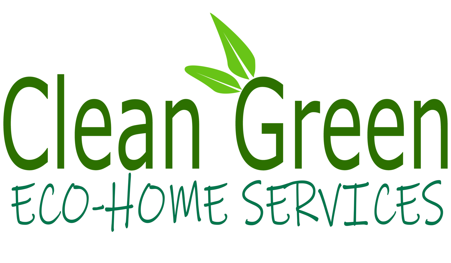 Clean Green Eco Home Service