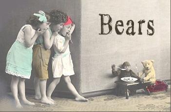bearheader.jpg