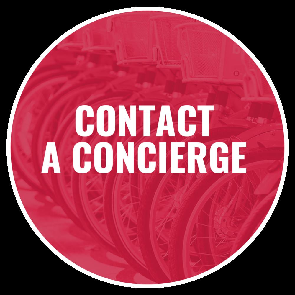 Contact Image - Circle.png