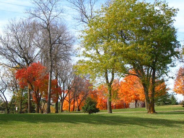 autumncolors-640×480.jpg