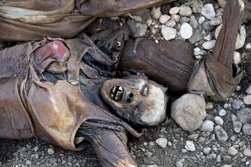 Corpse from the rubble.