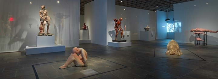 "The Gallery's ""Figuring Flesh"" room contains many sculptures testing the boundaries of flesh in sculpture. In the middle is the ""Gravedigger"", and in the back are the photographs of the maimed World War I veterans."
