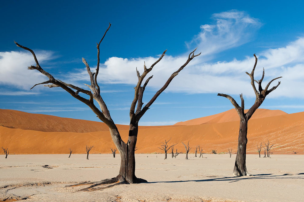 African Footprint Safaris Namibia