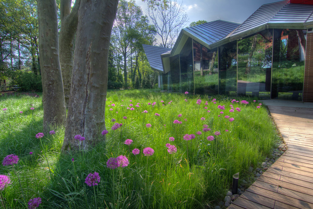 An environmentally sensitive blend of dwarf fescue grasses is used in lieu of traditional lawn, except in very high traffic areas. Underscoring the bold lines of the architecture, the meadow was ordered on a grid extending from the gallery.