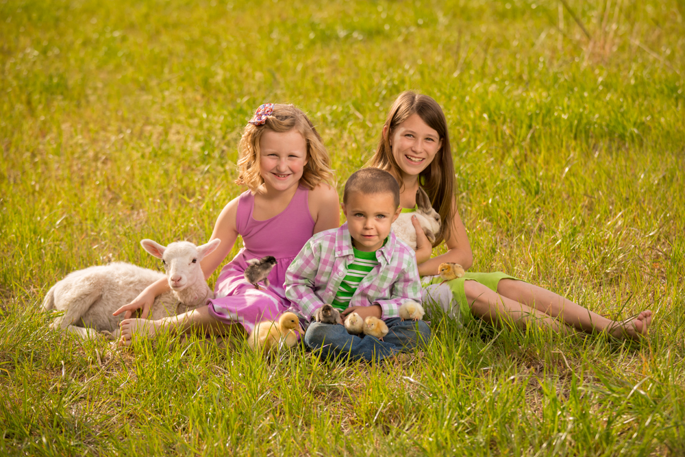 Conway-farm-children-portrait-photography