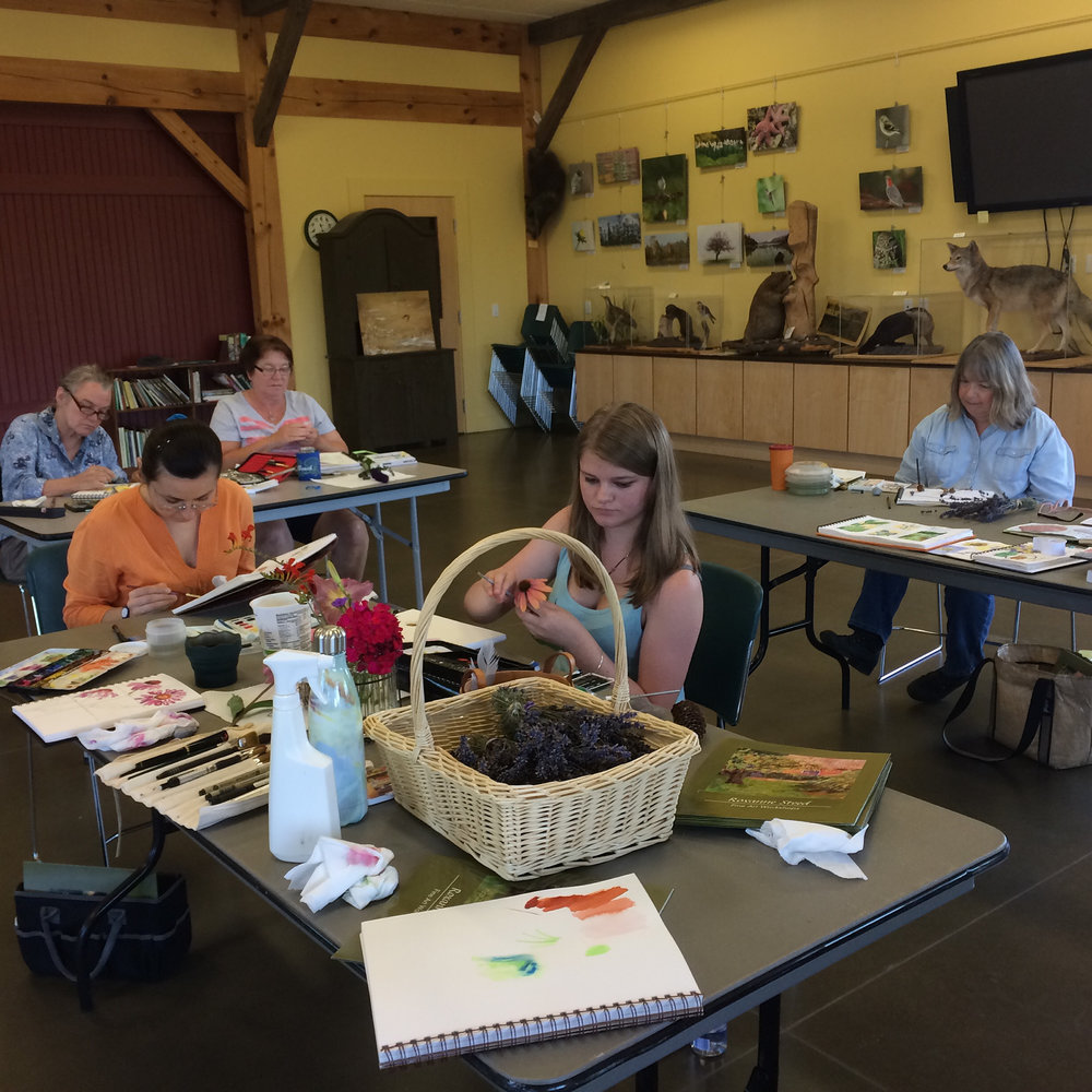 Sketch class at CT Audubon, Pomfret (2).jpg