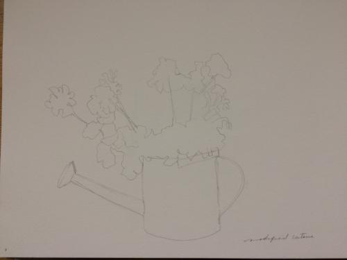 Modified contour drawing geraniums.jpg