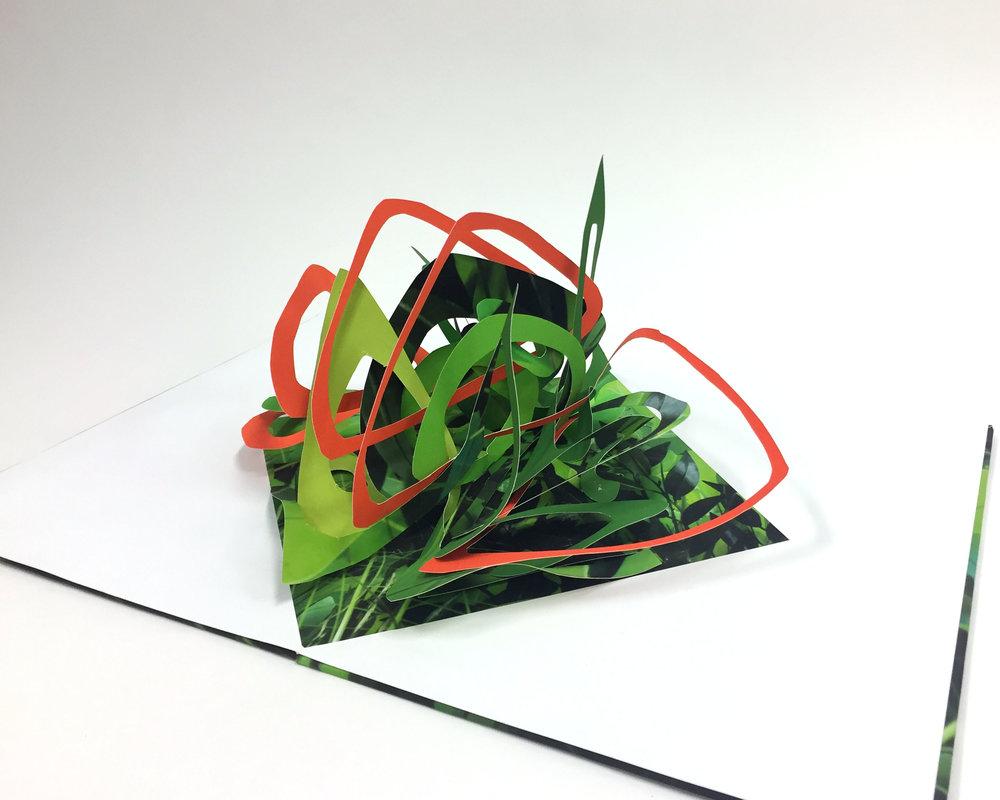 Botanicals II
