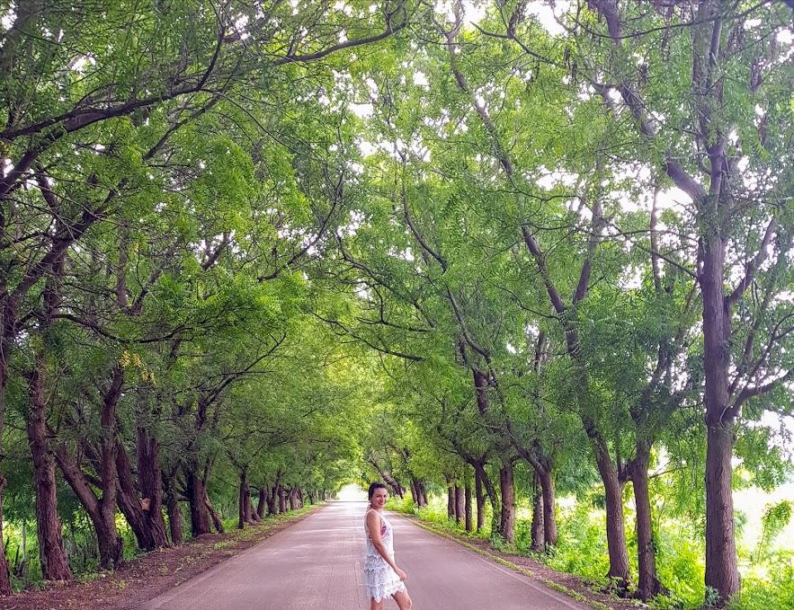 Aprendiendo a HYGGE - Pararse y disfrutar de la naturaleza en un camino.