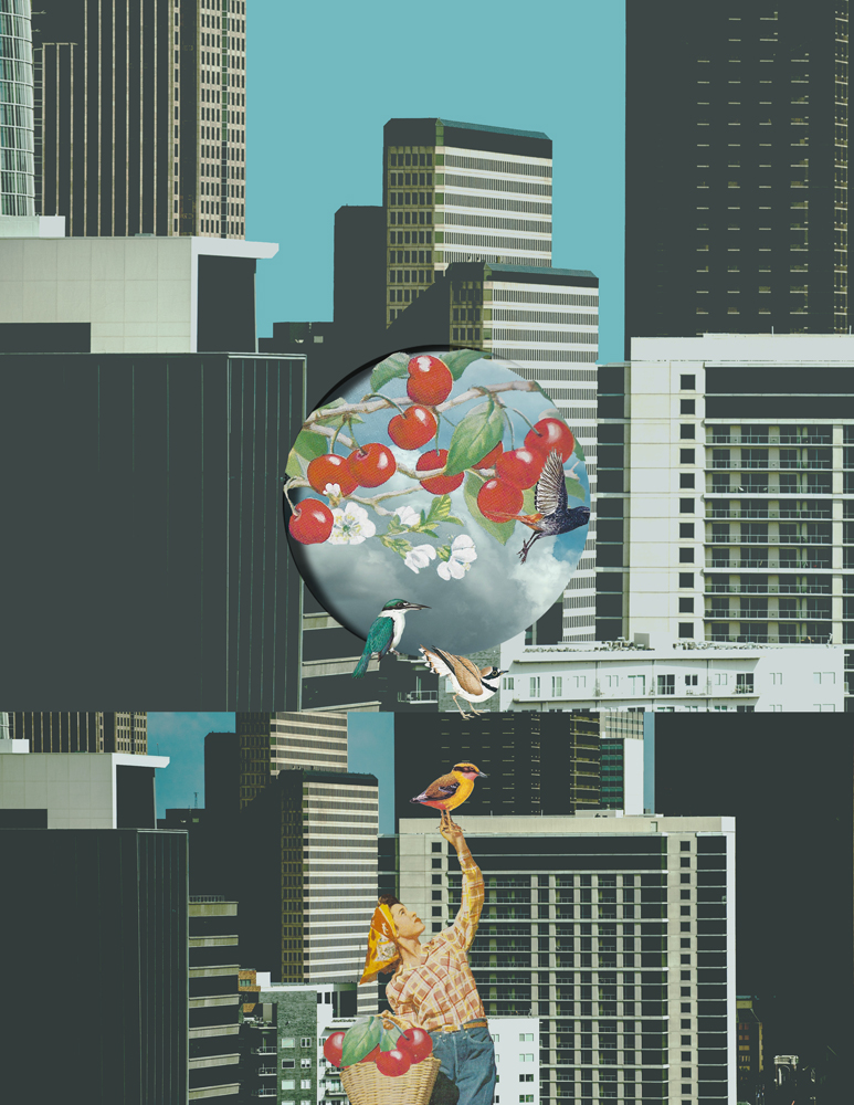 lovebirds&cherries-2.jpg