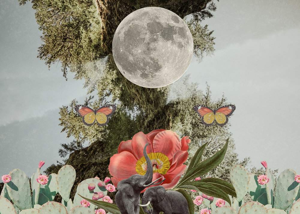 Mother&Moon&Balance.jpg