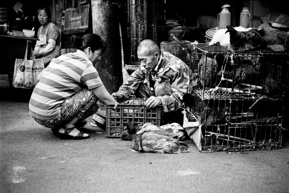 Maud WALAS Street Photography SHANGHAI 06.jpg