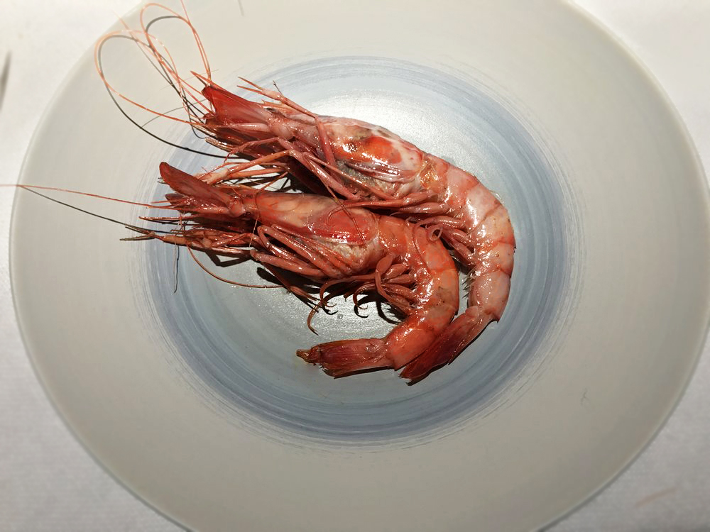 Red Prawns of Palamos
