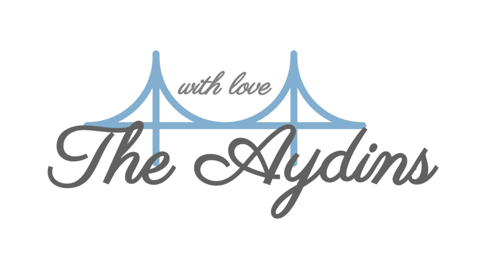 The Aydins-logo.png