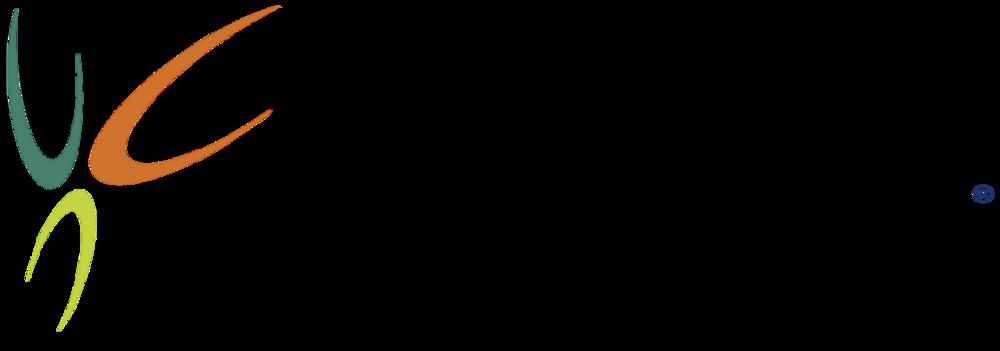 caltex-logo.png